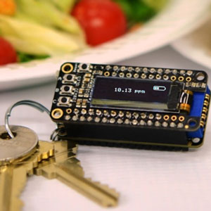keychain lab for food allergies