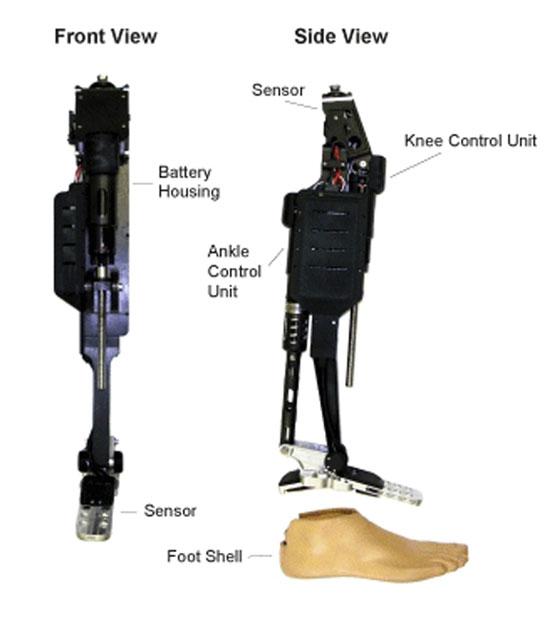 Vista frontal y lateral de las prótesis motorizadas de rodilla y tobillo de Vanderbilt. La prótesis incluye articulaciones motorizadas de rodilla y tobillo, sensores que detectan la carga sobre el talón y el antepié así como el movimiento producido por el usuario; microcontroladores que se utilizan para proporcionar un control apropiado de las articulaciones de rodilla y tobillo, según la información tomada del sensor; y una batería recargable, que proporciona energía suficiente para un día completo de actividad y que está completamente incluido dentro de la estructura de la prótesis.