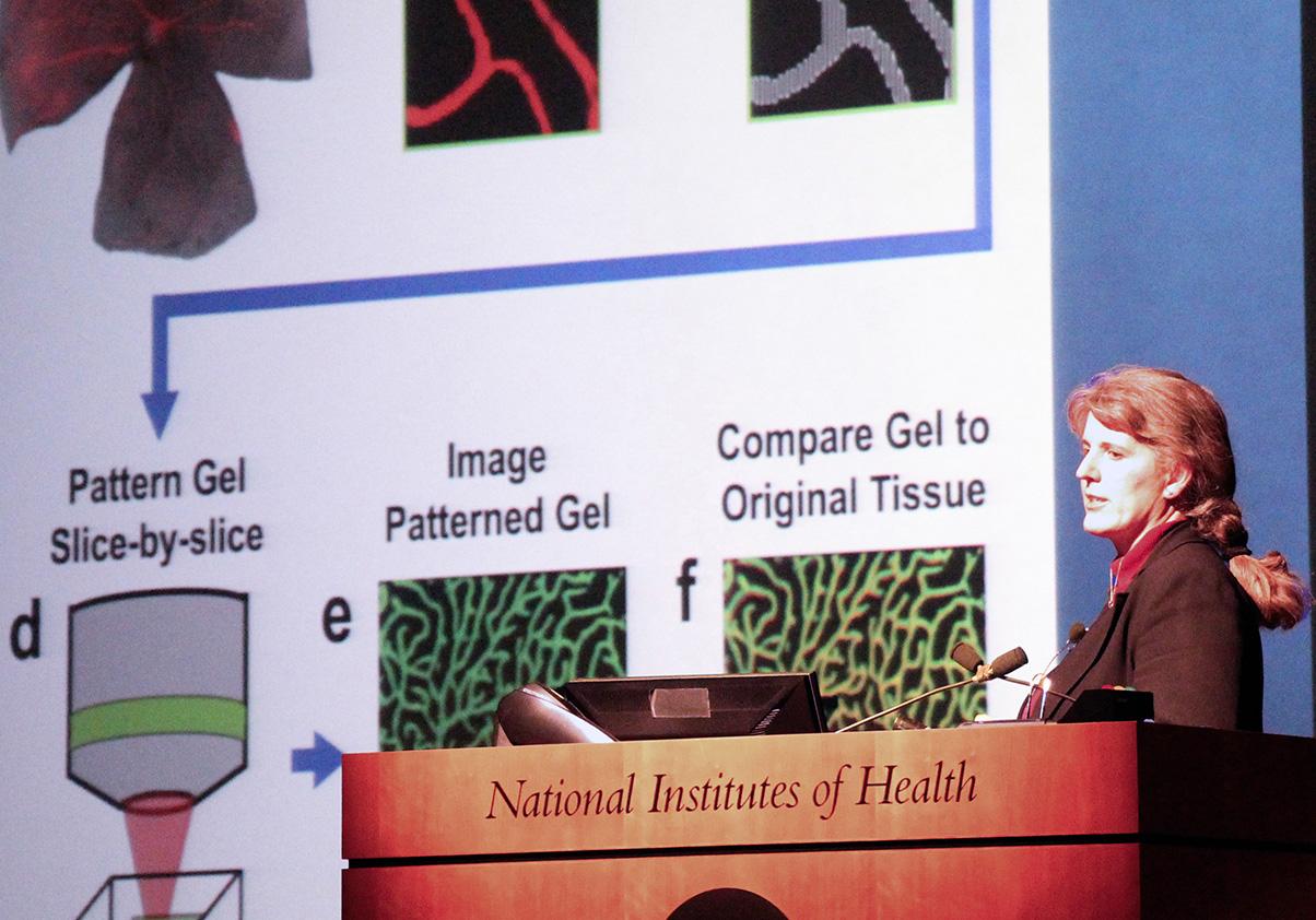 Jennifer West delivers WALS talk