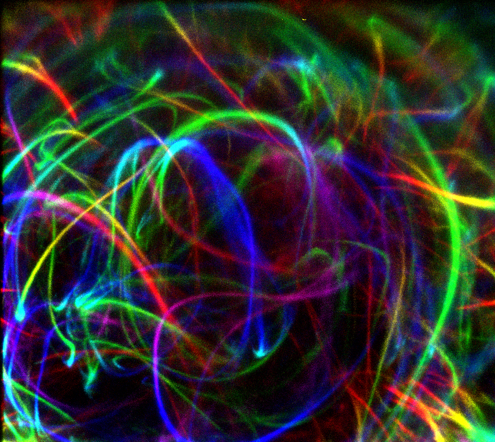 An image of curved colored lines.