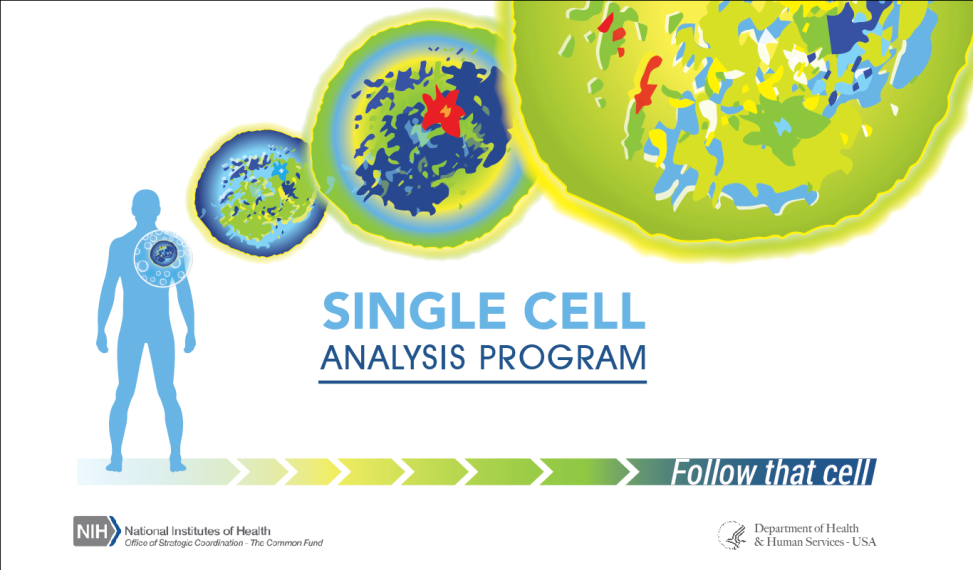 This is an image of the single cell challenge logo