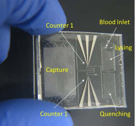 A photo of the disposable chip