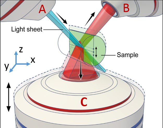 cartoon image of three microscope lenses imaging a sample