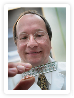El Dr. David Haake sujeta el chip sensor electroquímico que se utiliza para detectar la bacteria que causa las infecciones urinarias. Crédito: Reed Hutchinson