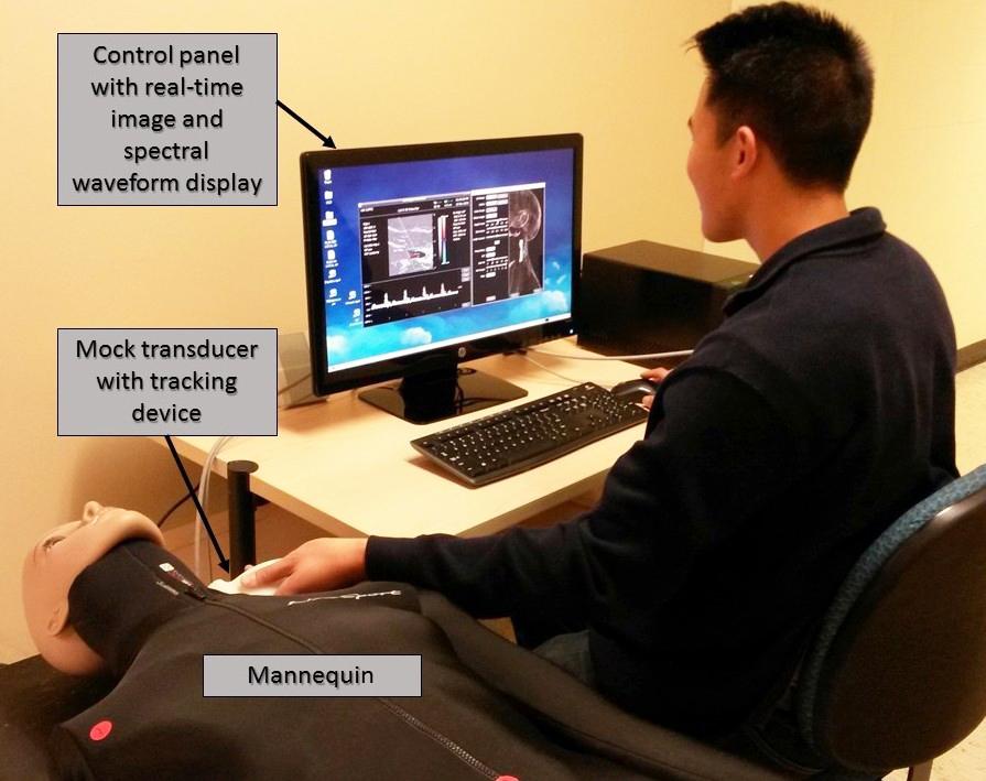 Duplex ultrasound simulator