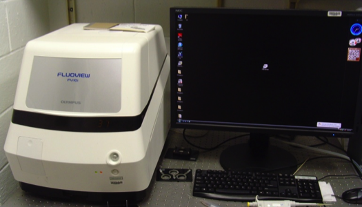 Olympus Fluoview FV10i Confocol Microscope