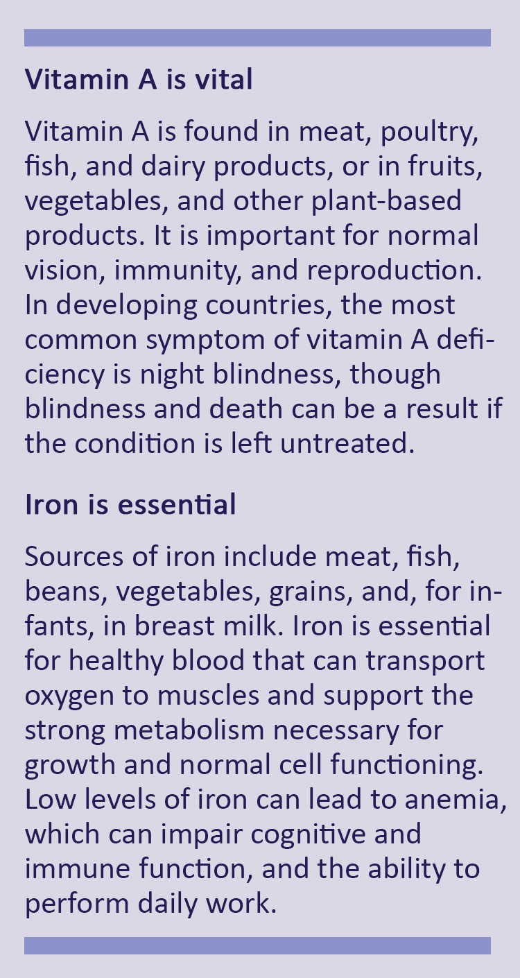 Description of vitamin A and iron deficiency