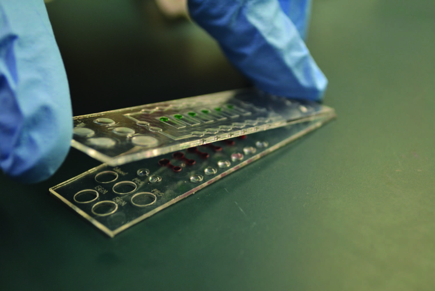 This is a photograph of the microfluidic device used to diagnose asthma. It is the size of a microscope slide.