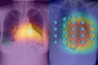 medical images in colorful artwork