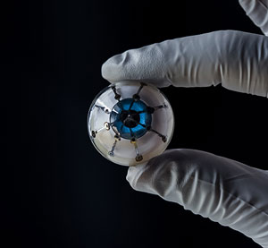 prototype of a bionic eye