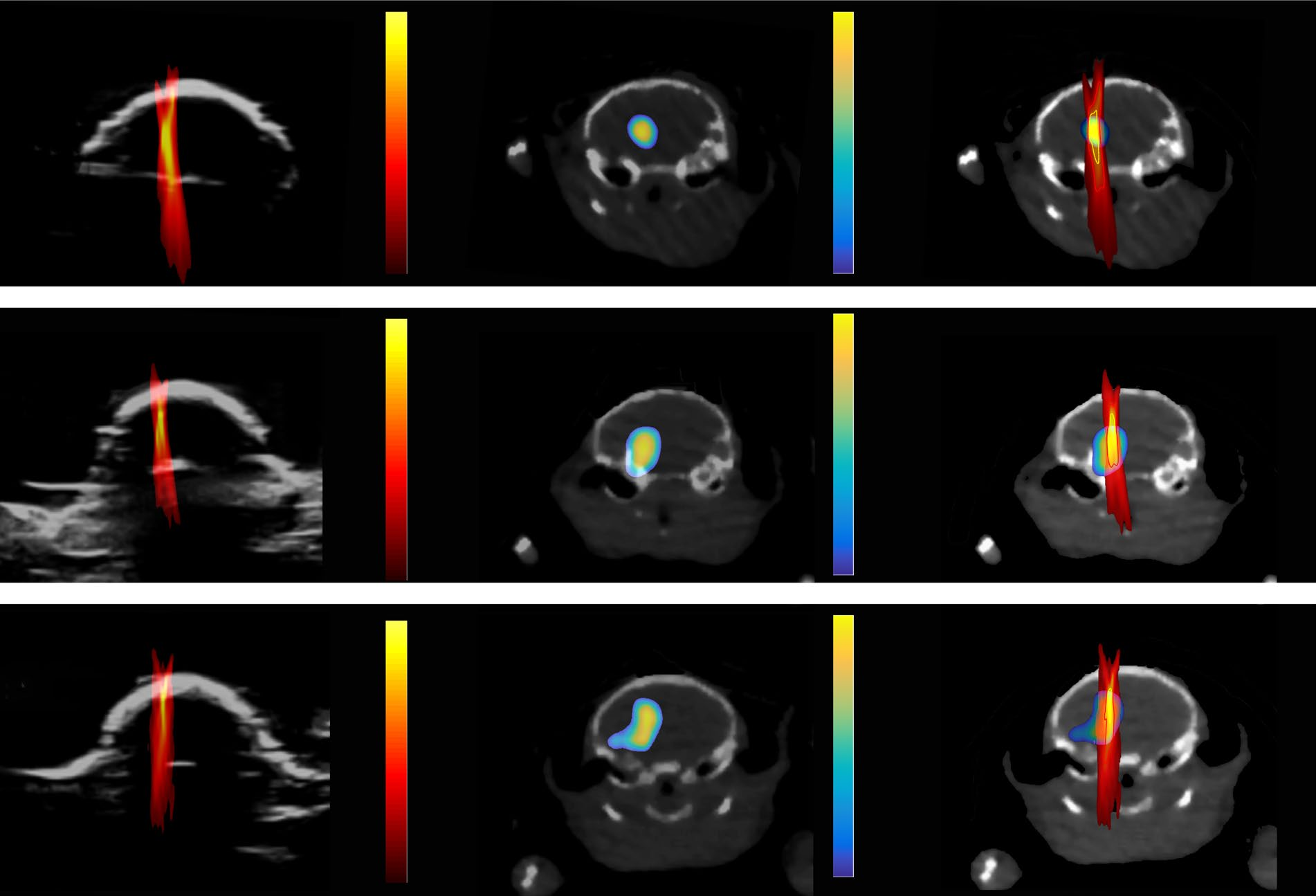 PCI images compared to PET/CT images showing location and dose of drug in a mouse brain