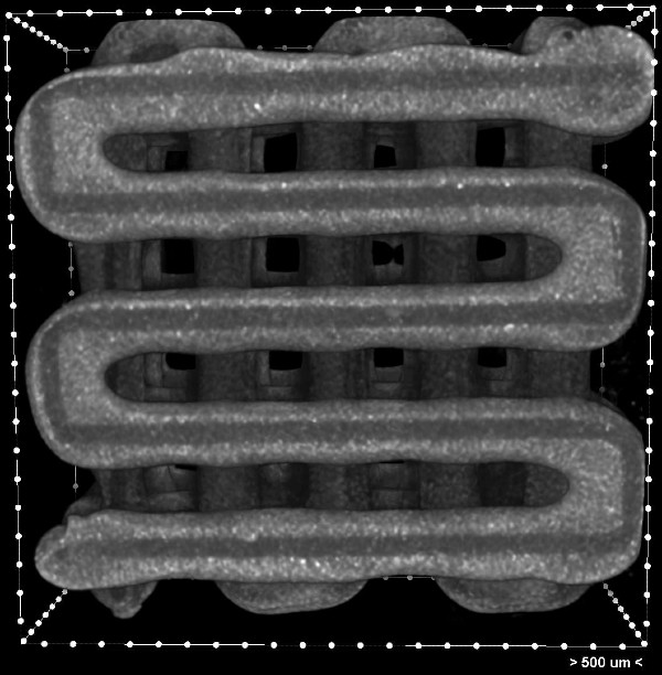 CT image of tissue chip with grooves for deposition of cells