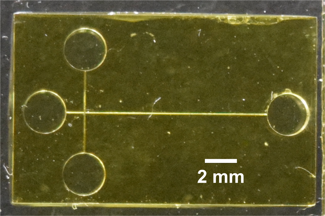 An photo of the 3D printed chip is yellow with two perpendicular lines with circles at both ends of each of the channels.