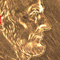 "This image shows the size scale of the microgripper relative to a penny. The 0.1-1 mm grippers resemble tiny dust particles. "" title=""This image shows the size scale of the microgripper relative to a penny. The 0.1-1 mm grippers resemble tiny dust particles."