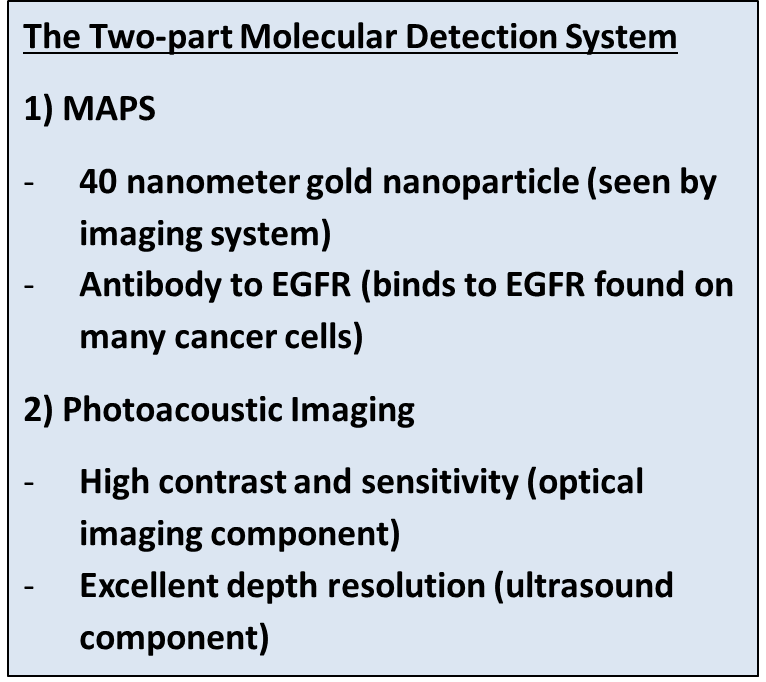 Sidebar describing basic components of the two-part molecular detection system