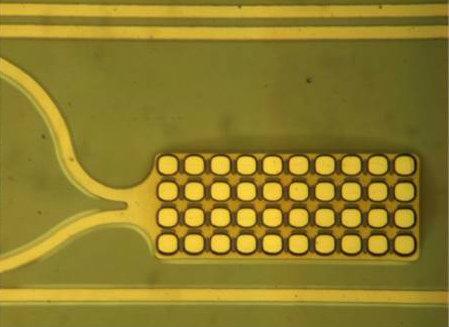 Single electrode of multielectrode array
