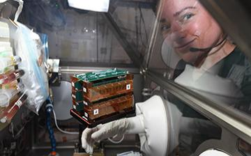 astronaut and tissue chip experiment