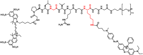 Image of a chemical structure of a fluroescent probe